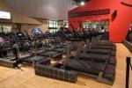 Cardio Gallery, Jungle Gym, Freemotion, Treadmills, New Equipment, Final