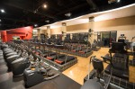 Cardio Gallery, Jungle Gym, Freemotion, Treadmills, New Equipment, Final, Ladder, aerial